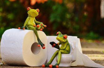 туалетная бумага и лягушки