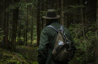 охотник, лес