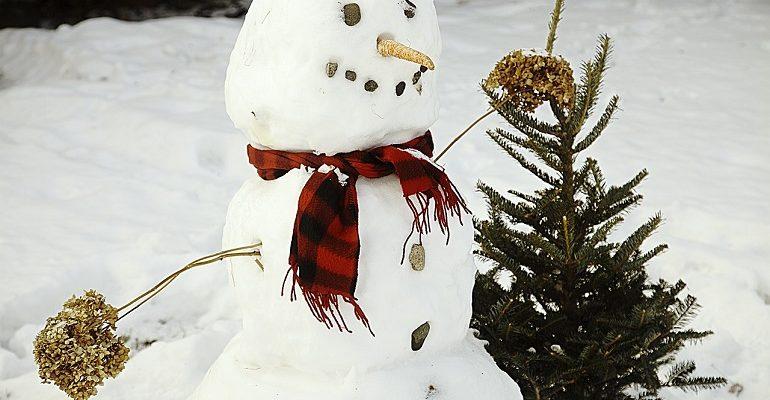 что снимки танцующий снеговик фото особенностью данной модели