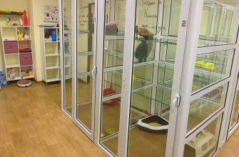 Гостиница для животных. Фото предоставлено отелем CATS' ROOM