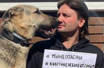 эдгард запашный директор Большого Московского цирка