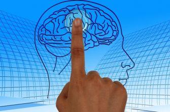 мозг психолог технологии
