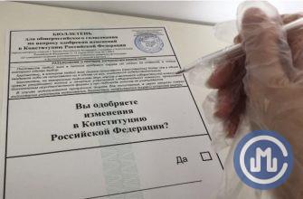 голосование поправки