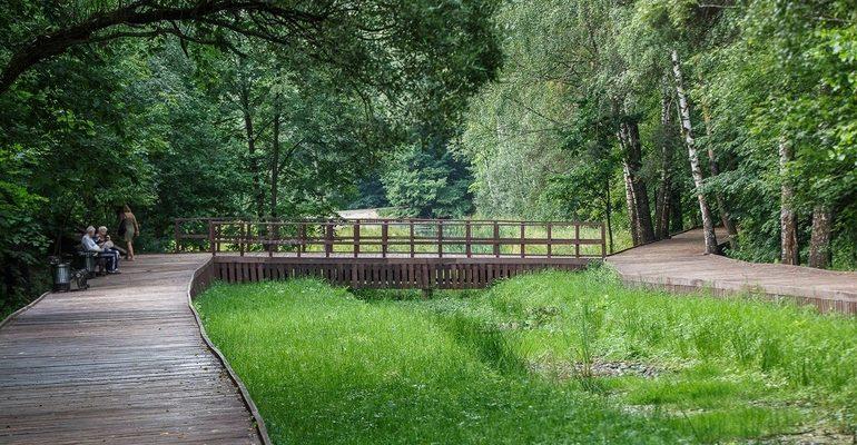Бирюлевский дендропарк парк природа лес