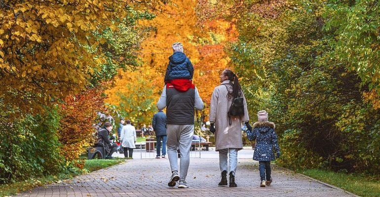 семья дети ребенок осень парк